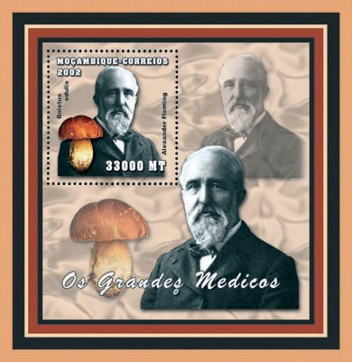 Alexandre Fleming (mushrooms) 33000 MT - Issue of Mozambique postage Stamps