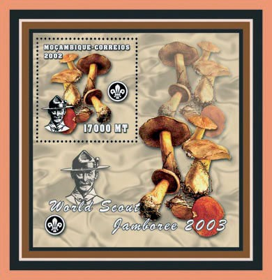 Scouts - Mushrooms 17000 MT - Issue of Mozambique postage Stamps