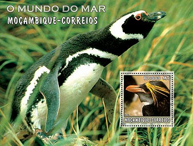 Penguins (green)  110000 MT  S/S - Issue of Mozambique postage Stamps