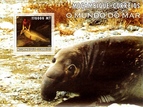 Sea Elephant 110000 MT  S/S - Issue of Mozambique postage Stamps