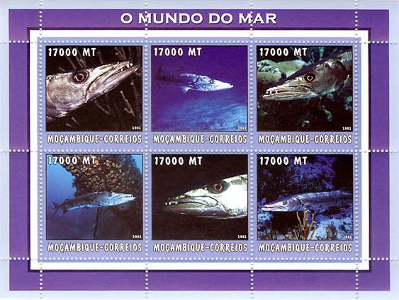 Baracuda  6 x 17000  MT - Issue of Mozambique postage Stamps