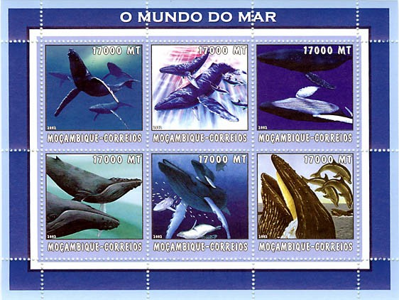 Whales  6 x 17000  MT - Issue of Mozambique postage Stamps