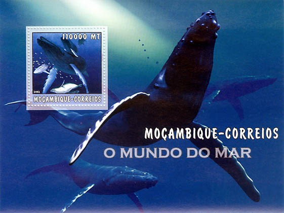 Whales  110000 MT  S/S - Issue of Mozambique postage Stamps