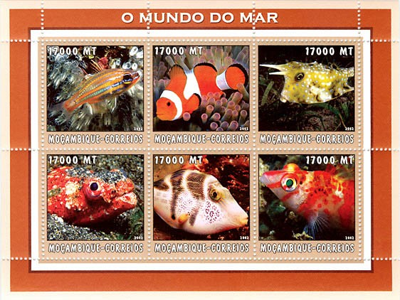 Tropical fish 1    6 x 17000  MT - Issue of Mozambique postage Stamps