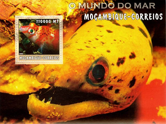 Tropical fish 1 (yellow) 11000 MT  S/S - Issue of Mozambique postage Stamps