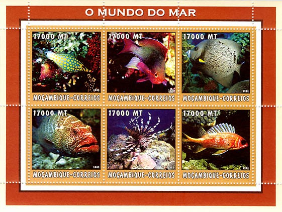 Tropical fish 2    6 x 17000  MT - Issue of Mozambique postage Stamps