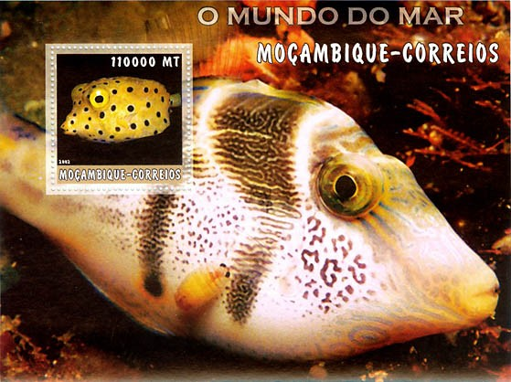 Tropical fish 2 (red) 110000 MT  S/S - Issue of Mozambique postage Stamps