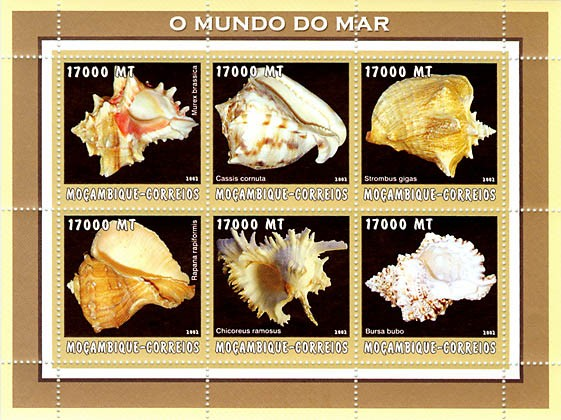 Sea shells (yellow)  6 x 17000  MT - Issue of Mozambique postage Stamps