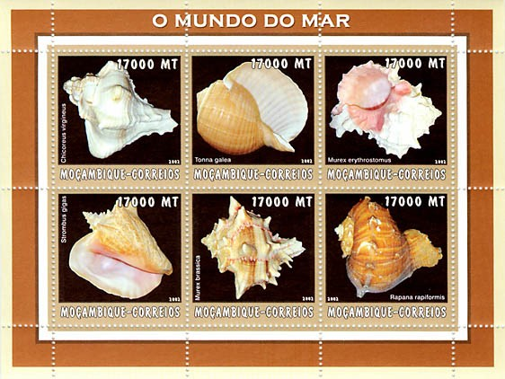 Sea shells (beige)  6 x 17000  MT - Issue of Mozambique postage Stamps