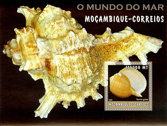 Sea shells (yellow)  110000 MT  S/S - Issue of Mozambique postage Stamps