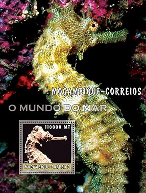 Sea Horses (brown)110000 MT  S/S - Issue of Mozambique postage Stamps