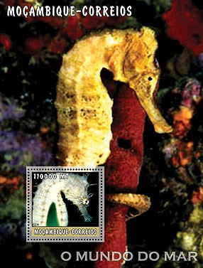 Sea Horses (white) 110000 MT  S/S - Issue of Mozambique postage Stamps