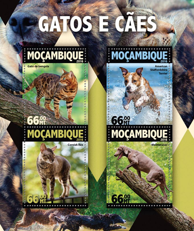 Dogs and Cats - Issue of Mozambique postage Stamps