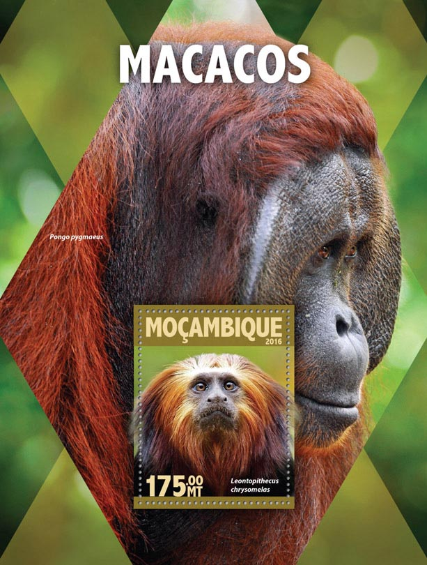 Monkeys - Issue of Mozambique postage Stamps