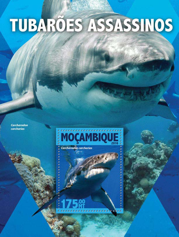 Killer sharks - Issue of Mozambique postage Stamps