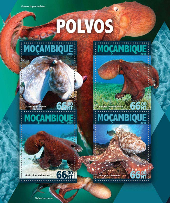 Octopus - Issue of Mozambique postage Stamps