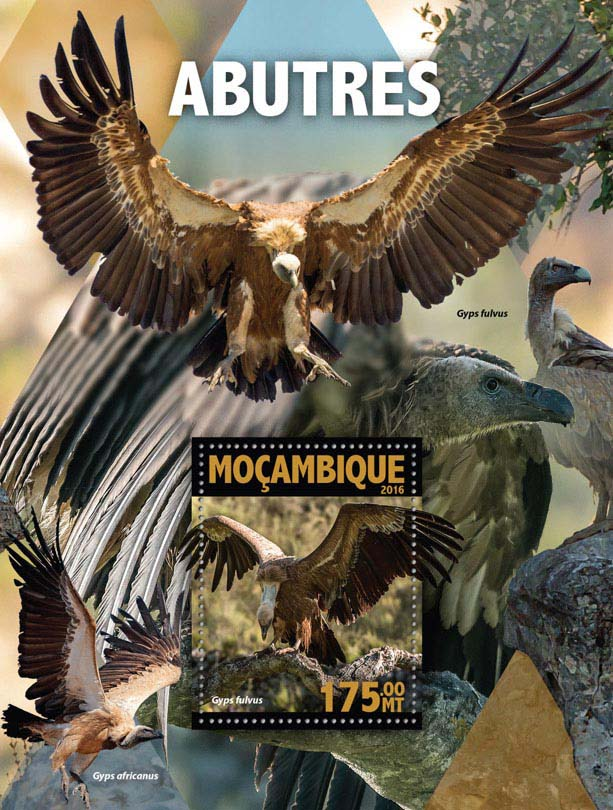 Vultures - Issue of Mozambique postage Stamps