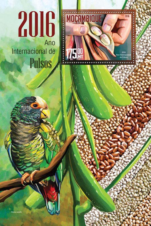 Year of Pulses - Issue of Mozambique postage Stamps