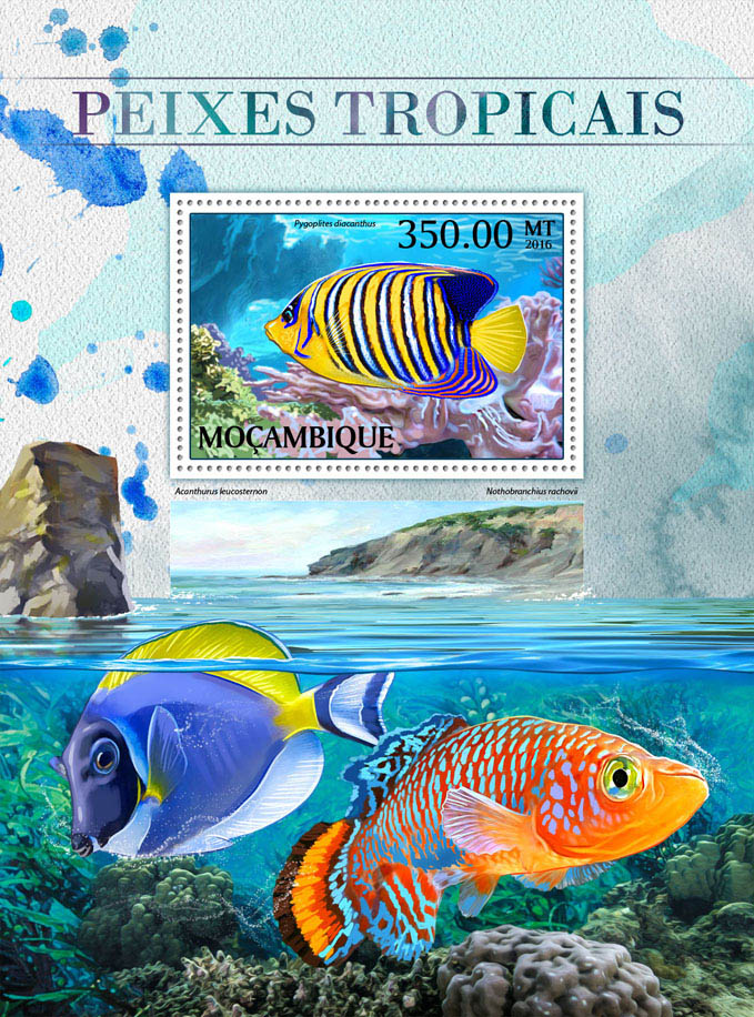 Tropical fishes - Issue of Mozambique postage Stamps