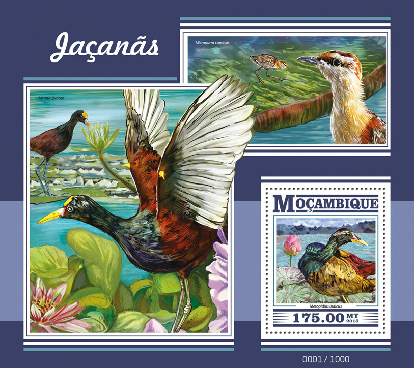 Jacanas - Issue of Mozambique postage Stamps