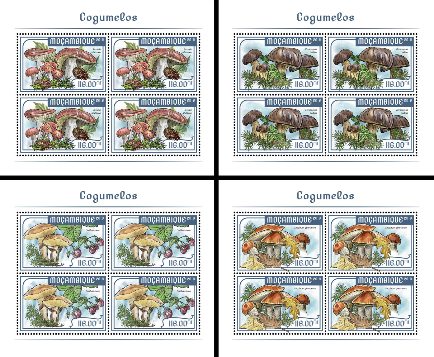 Mushrooms (4 sets of 4 stamps) - Issue of Mozambique postage Stamps