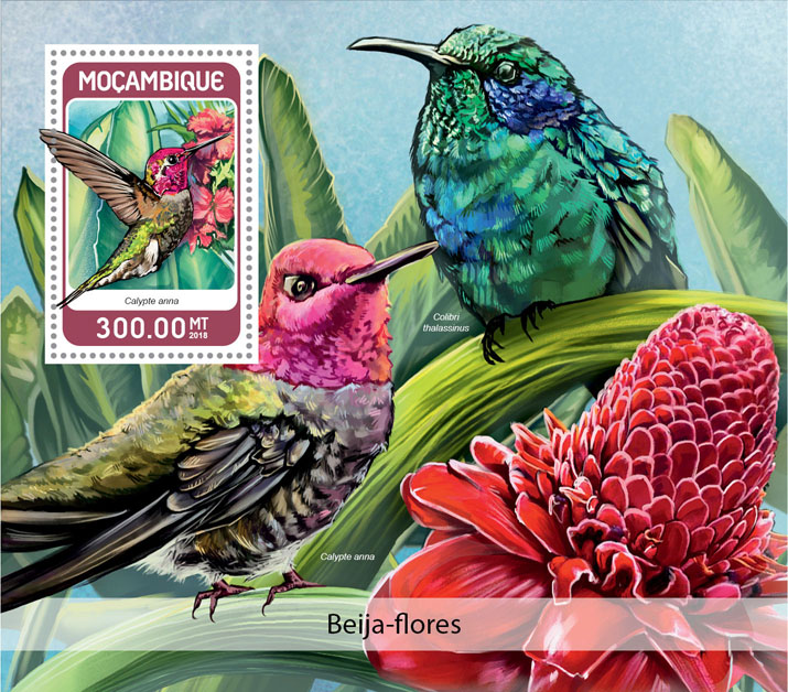 Colibri - Issue of Mozambique postage Stamps