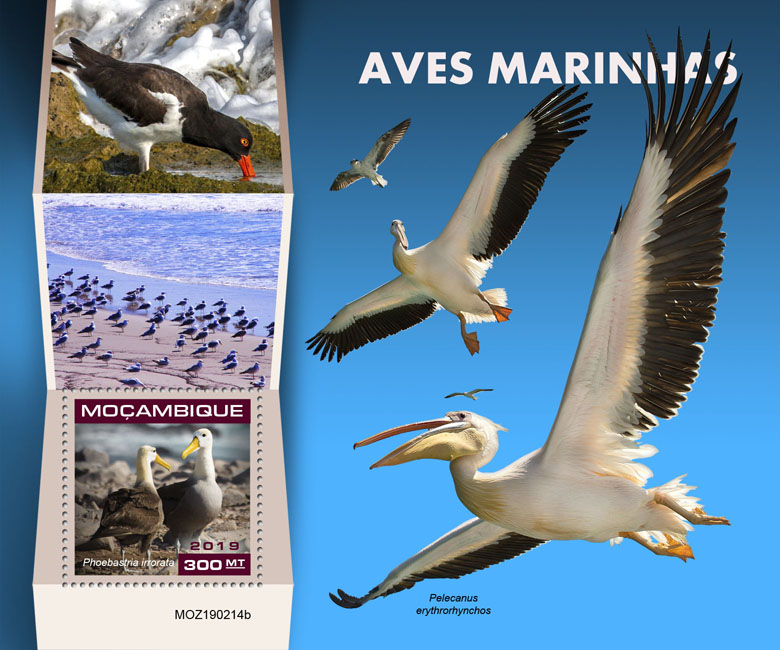 Seabirds - Issue of Mozambique postage Stamps