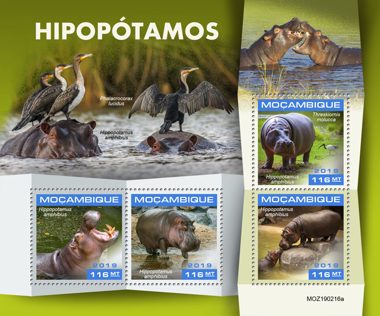 Hippopotamus - Issue of Mozambique postage Stamps