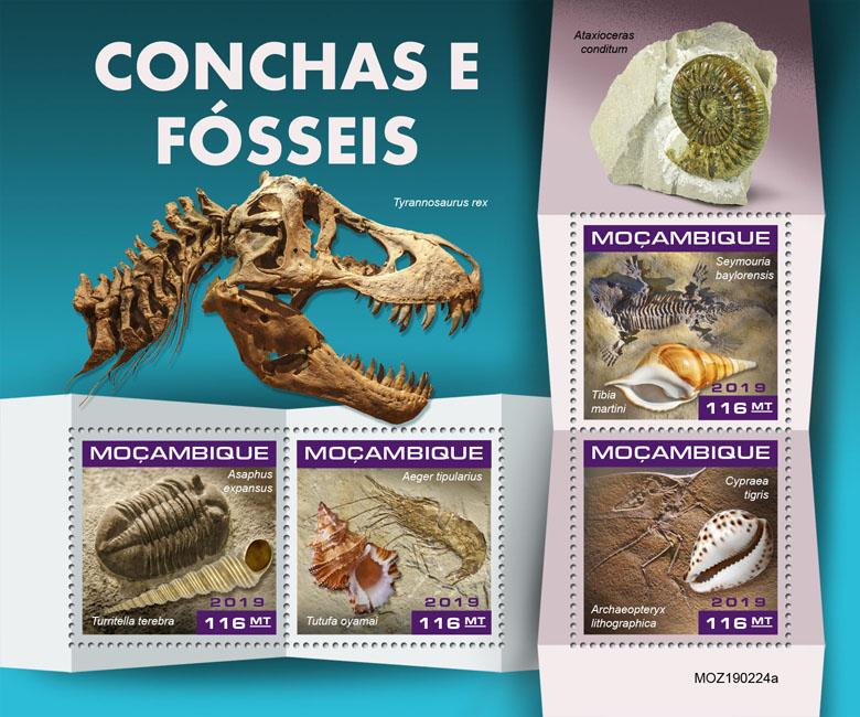 Shells and fossils - Issue of Mozambique postage Stamps