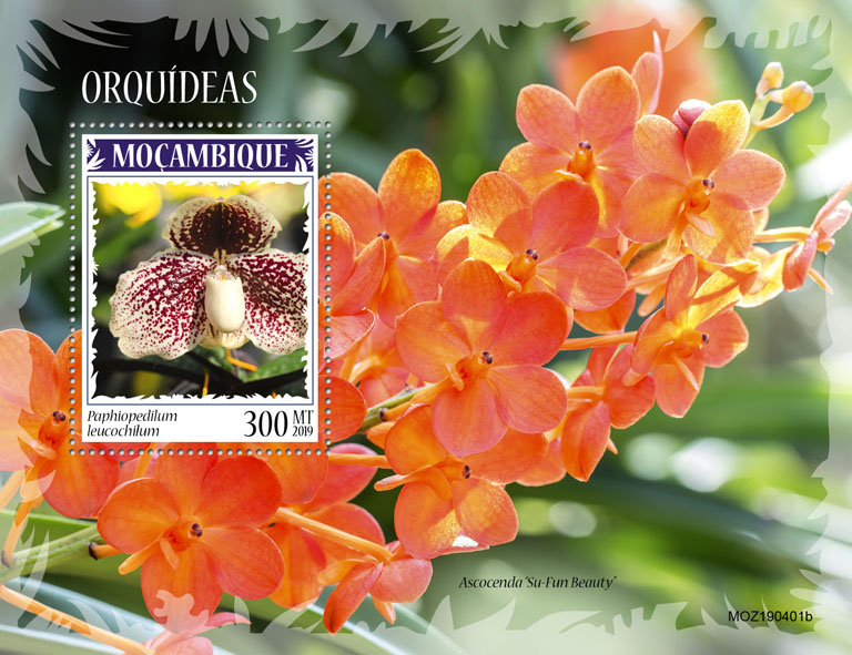 Orchids - Issue of Mozambique postage Stamps