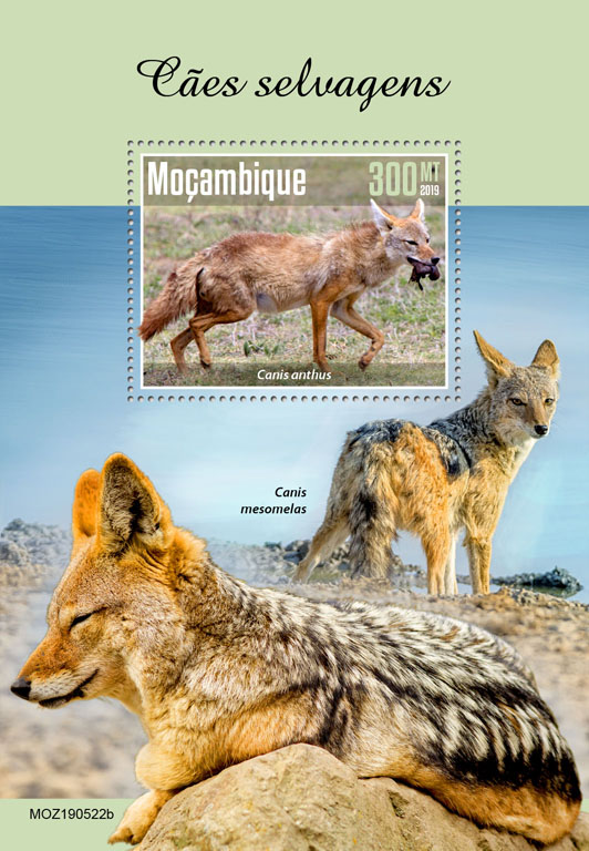 Wild dogs - Issue of Mozambique postage Stamps
