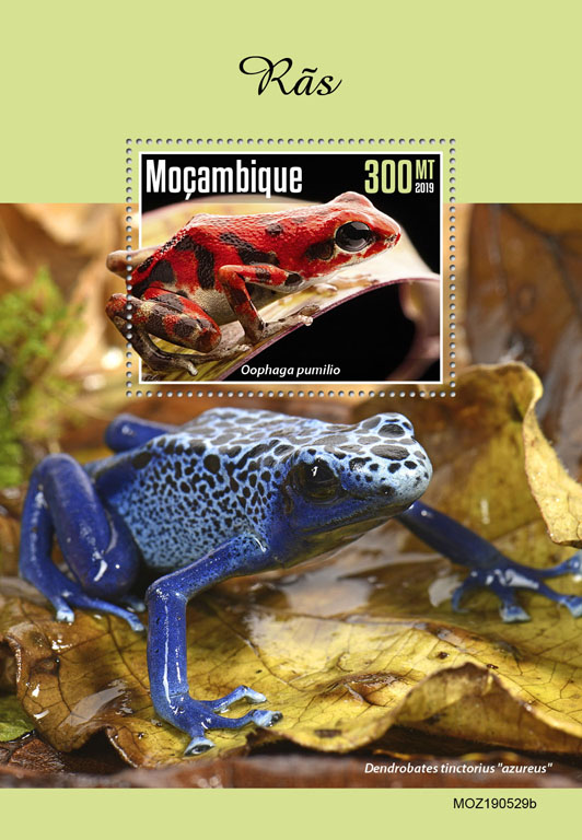 Frogs - Issue of Mozambique postage Stamps